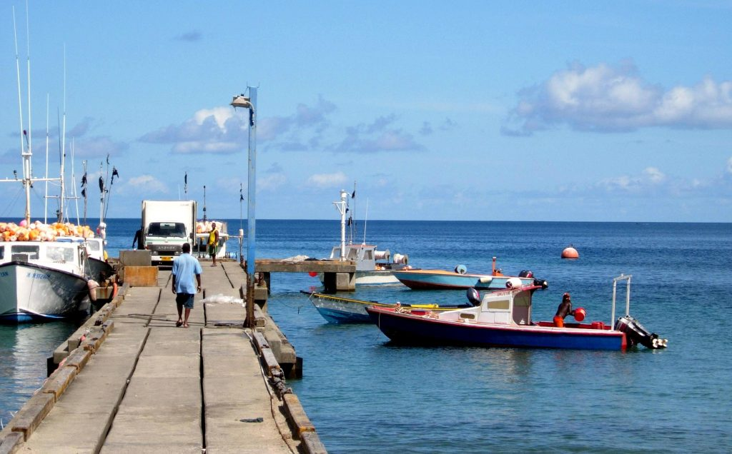 Fishermen in grenada start to go back out to sea